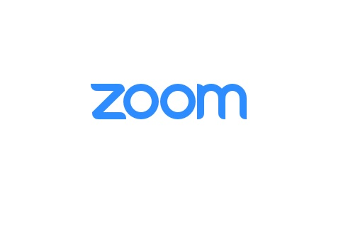 Zoom review