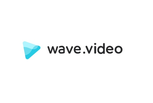 Wave video review