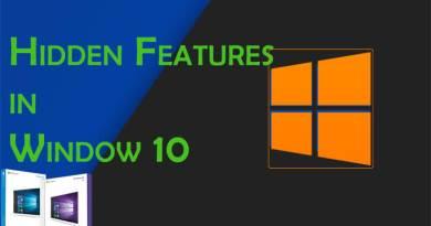 Window Features