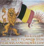 Afbeeldingsresultaat voor vlaamse leeuw vlag  beschadigd