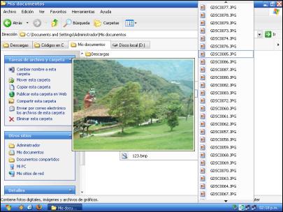 Captura previa de imagen con QT TabBar