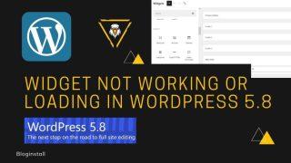 How to resolve widget not working or loading in WordPress 5.8