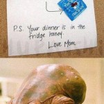 """IT'S A TRAP: """"Son, I know you've grown up and I'm proud of you. When Ashley comes over tonight, if things get serious, make sure you're SAFE! Use this!  P.S. Your dinner is in the fridge honey. Love, Mom."""""""