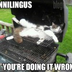 Cunnilingus: You're Doing It Wrong