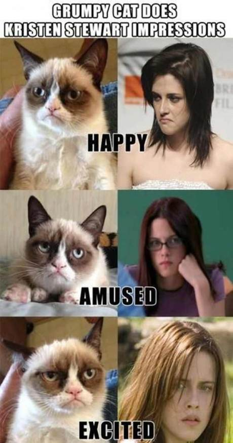 Grumpy Cat Stewart Does Kristen Stewart Impressions: Happy, Amused, Excited