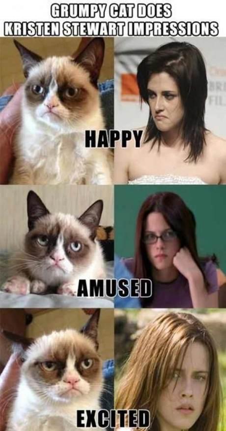 Grumpy Cat Stewart Does Kristen Stewart Impressions: Happy, Amused, Excited
