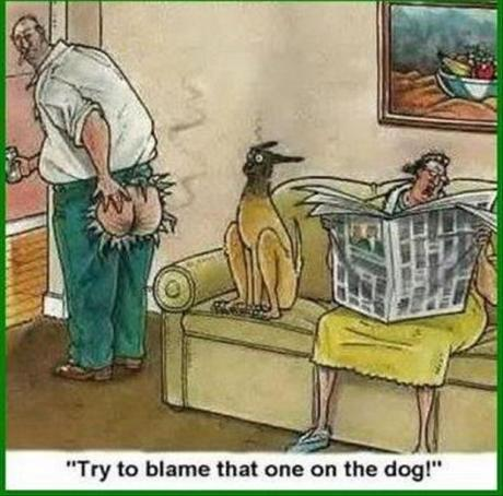 "Farted: ""Try to blame that one of the dog!"""