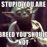 Master Yoda Speaks About Breeding