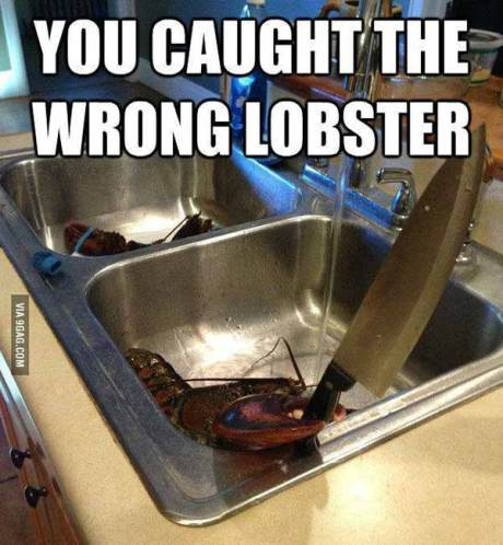 "Lobster with a Knife: ""You Caught the Wrong Lobster!"""