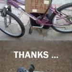 Bike For Seal?