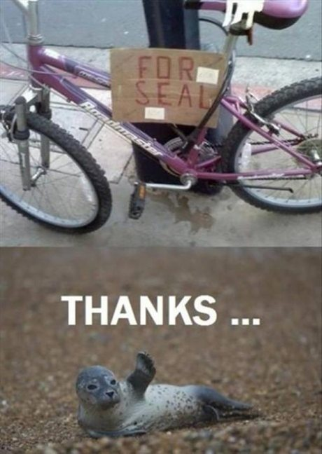 """Bike Sign: """"FOR SEAL""""  Seal: Thanks ..."""