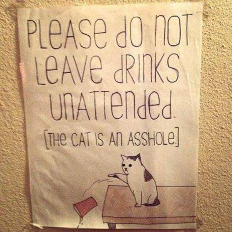 """Please Don't Leave Drinks Unattended. The cat is an asshole."""