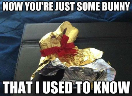 Chocolate Easter Bunny: Now You're Just Some Bunny That I Used 6o Know