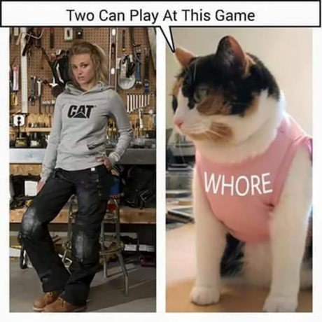 """(Girl with Cat shirt)(Cat with Whore shirt) """"Two can play at this game!"""""""