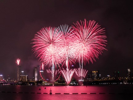 bright pink fireworks over city skyline