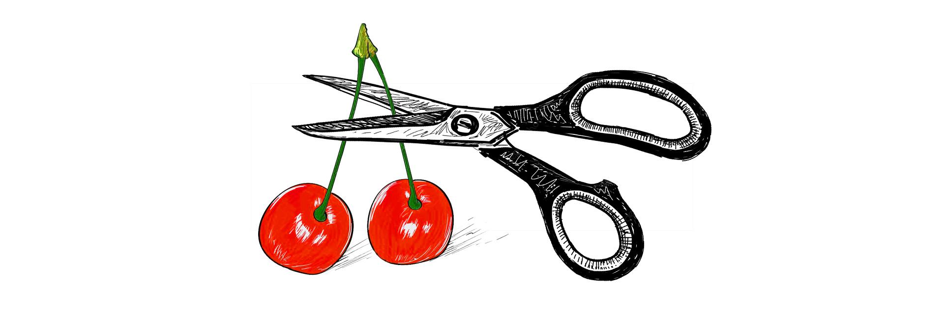 Orchidektomia - czereśnie i nożyczki