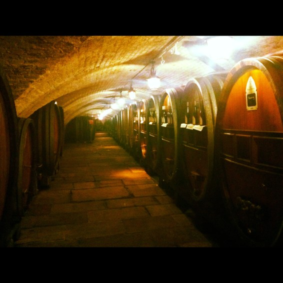 Cave de l'hopital civil de Strasbourg
