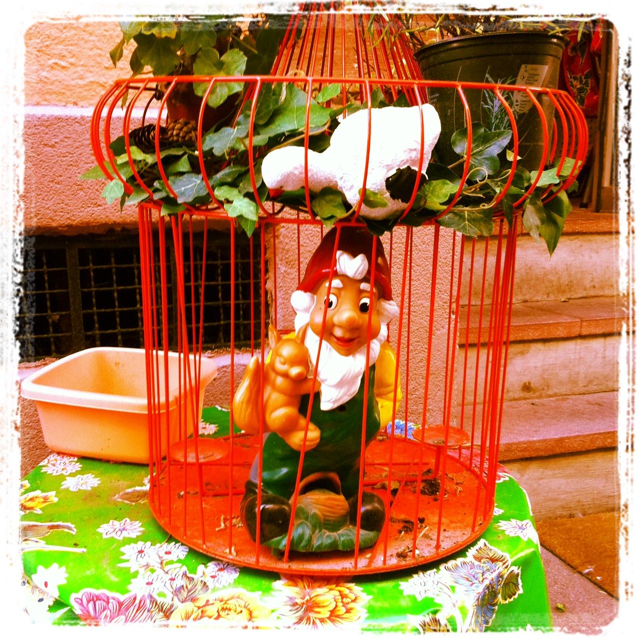 Nain en cage, rue sainte Madeleine Strasbourg