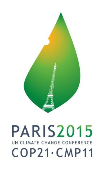 COP21 PUR etc Strasbourg Grand Rue