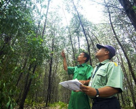 climate stewardship