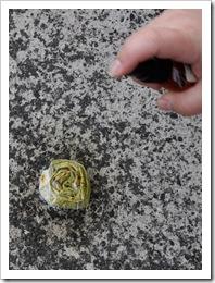 , Pomysł na kwiatki cz. I – skręcane różyczki