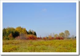 , Piękny dzień – jesień