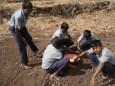Soil testing anyone?