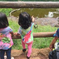 Brasília com crianças: parques e parquinhos