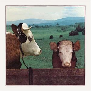 Thunder - Headphones for Cows (1981)