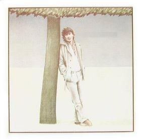 Steve Winwood - Steve Winwood (1977)