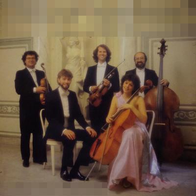 Maastrichts Salon Orkest – Eine Kleine Salonmusik (1987)