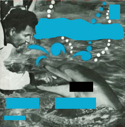 De Damrakkertjes olv Hans de Jong - Flipper (1966)