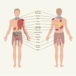 Ezek az átsugárzó fájdalmak életveszélyesek lehetnek! Figyelj a jelekre!