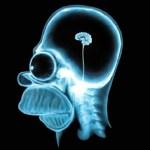 10 tipp, hogyan fejlesztheted gyorsan a memóriád. Ezt mindenkinek tudnia kell!