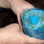 Növényeket gyökereztetünk föld nélkül! Remek módszer, amit érdemes kipróbálni!