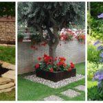 Ültess gyönyörű virágokat a kertbe, ezek a növények a fák köré is ültethetőek!