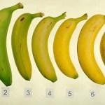 Szerinted hányas számú banán a legegészségesebb ? 1,2,3?. ? Tudd meg miért!