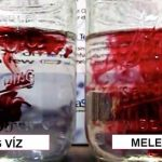 Hideg víz vagy meleg víz. Nézd meg melyik károsíthatja jobban az egészséget (+video)
