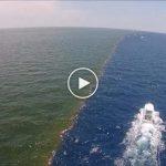 A természet erre is képes – A Mississipi-folyó és a Mexikói-öböl találkozása a Föld egyik csodája