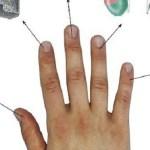 Minden ujjunk az egyik szervünkhöz kapcsolódik – Gyógyítás 5 perc alatt japán módszerrel