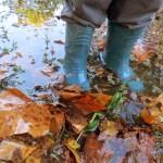 Jesen u vodi – od bolnice do skakutanja u lokvi