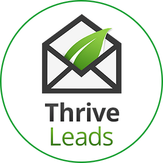 Thrive leads email marketing services