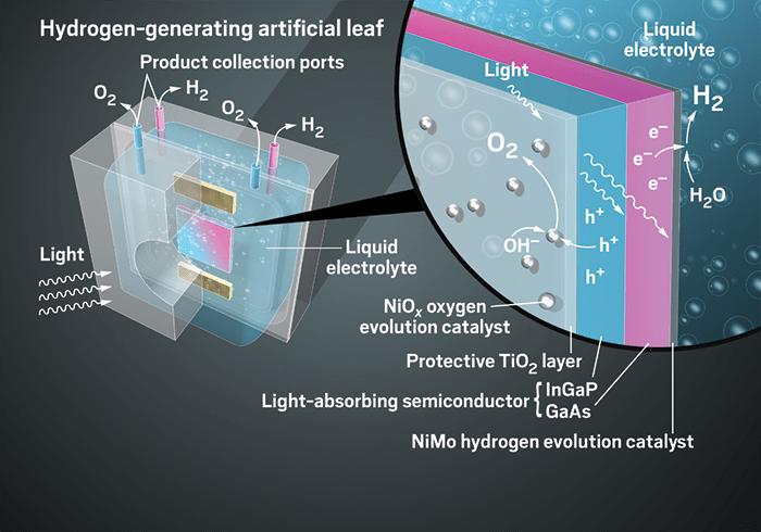 01-artificial-leaf-solar-power-components-artificial-leaf-technology