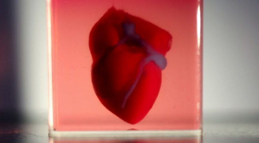 3d-printed-heart-valve-3d-printed-silicone-heart-3D-printing-hearts