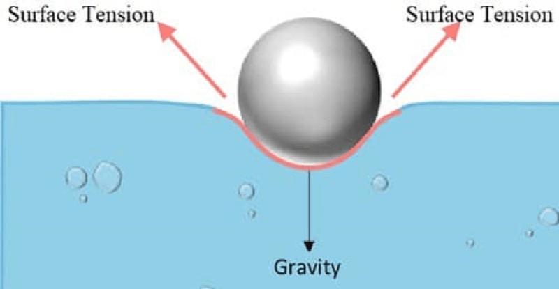 01 Surface Tension Cohesion Force | Blogmech.com