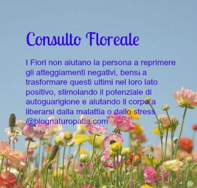 floriterapia psicosomatica per frigidità www.blognaturopatia.com