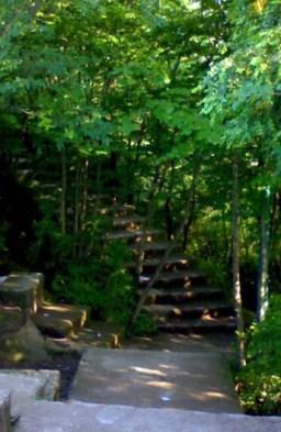 پله هایی که در دل کوه و بین طبیعت زیبایش جهت صعود به بام سبز لاهیجان تعبیه شده اند