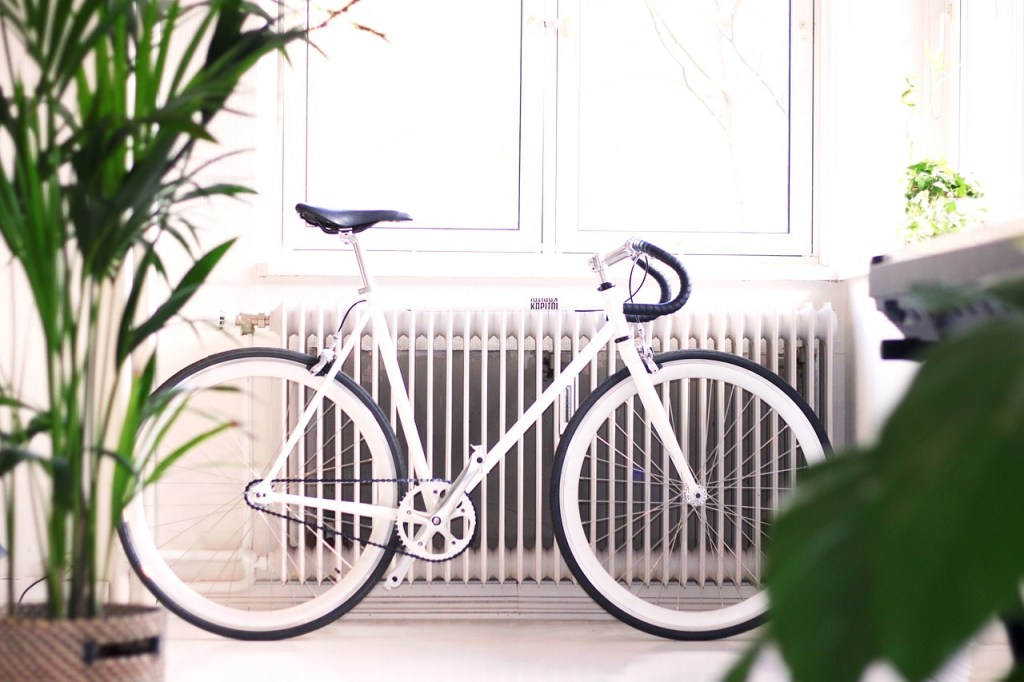 A bike and indoor plants