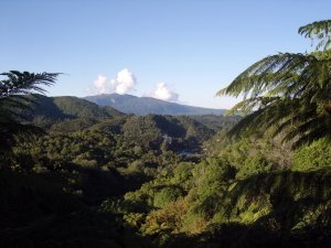 Waimangu valley sulphur lakes