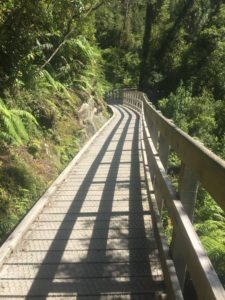 walkway wooden path hokitika gorge